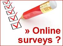 online anketa